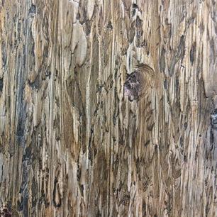 Tree Bark Venetian Plaster, Stucco Lamundo