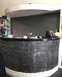 Marmorino Palladino Lime Plaster, Meoded Paint & Plaster